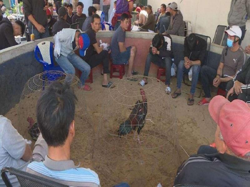Phát hiện, bắt quả tang sới gà của hơn 40 đối tượng tại Đắk Lắk
