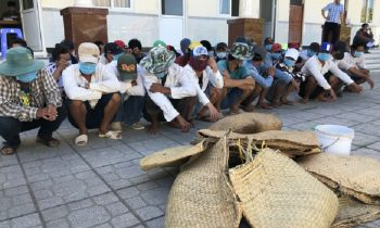 Triệt phá sòng bạc bằng hình thức đá gà tại Cà Mau, tạm giữ 34 đối tượng